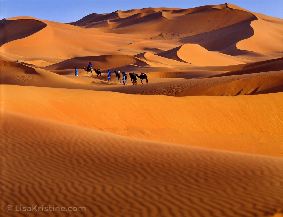 essays on the sahara desert