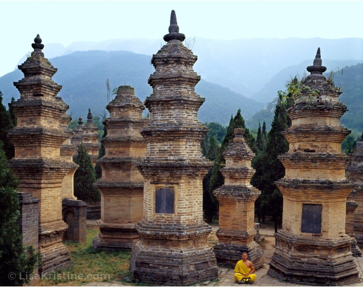 Image result for pagoda forest