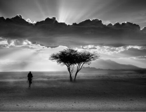 Solitude | Kenya – Lisa Kristine Black and White Fine Art Phtography